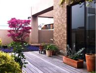 気持ちの良い屋上庭園